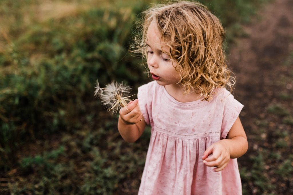 Little girl blowing a wish flower while enjoying time in nature.