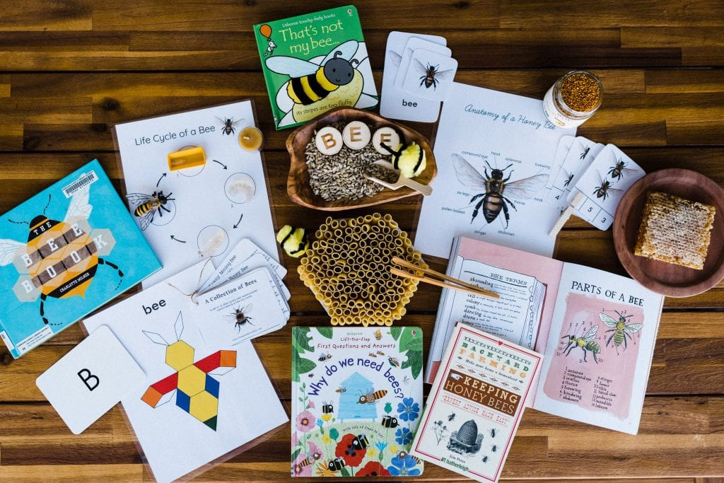 Bee unit study for nature based homeschool.